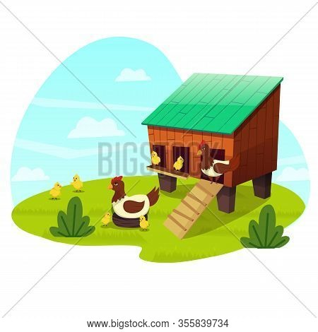 Mother Chicken With Little Chicks Walking On Green Grass Near Wooden Coop On Nature Landscape Backgr