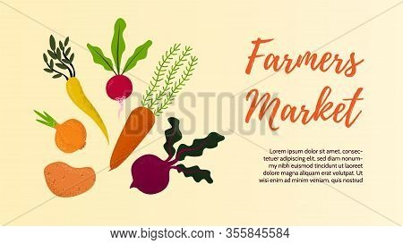 Vegetables Banners Of Farmer Market Fall Veggies - Beetroot, Carrot, Parsnip With Green Leaves On Wh