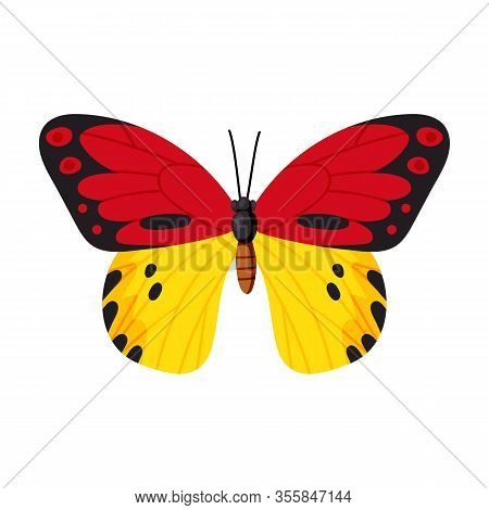 Butterfly Vector Icon.cartoon Vector Icon Isolated On White Background Butterfly .