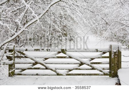Wooden Gate In Snow