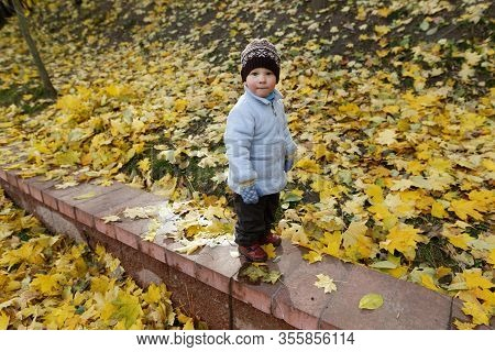 Little Child Stands On Parapet In Autumn