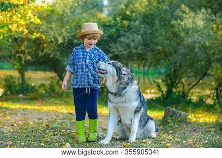 Boy Playing With His Dog In The Park. Active Children Concept. Kids Hiking In A Park With A Dog. Chi
