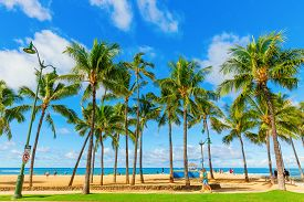 Kuhio Beach Park In Honolulu, Hawaii