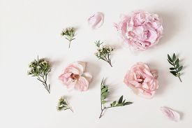 Decorative Floral Composition With Pink Roses, Peonies, Chameleucium Flowers And Green Leaves On Whi