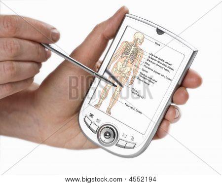 Pda, Medicine Software