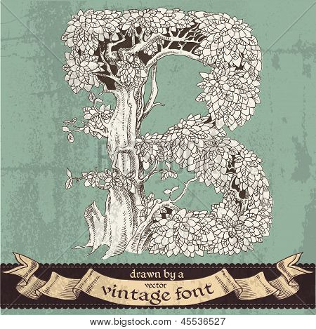 Magic grunge forest hand drawn by a vintage font - B