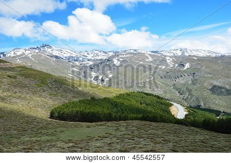 Spring View Of Sierra Nevada