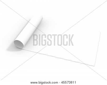 Paper roll isolated on white