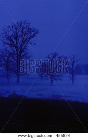 Blue Mist Vertical