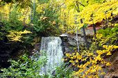 Yellow and gold Autumn leaves surround Hungarian Falls in Upper Peninsula Michigan. poster