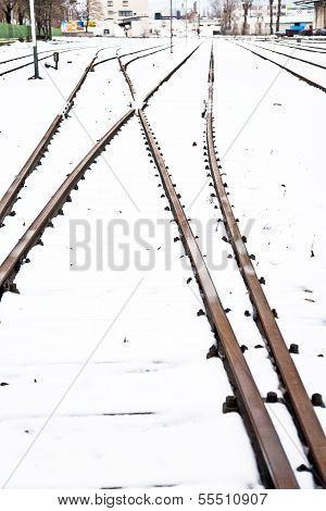 Snowbound Rails In Winter