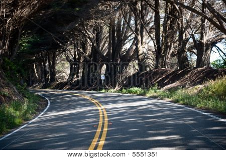 Mendocino County Road