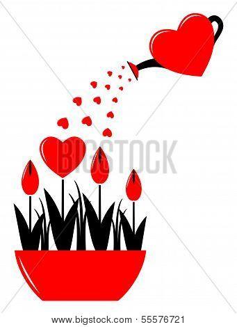 Heart Flowers In Pot