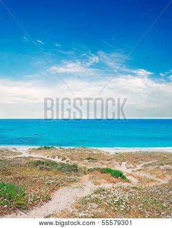 San Giovanni Coastline