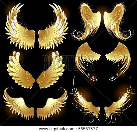 Golden Wings Of Angels.