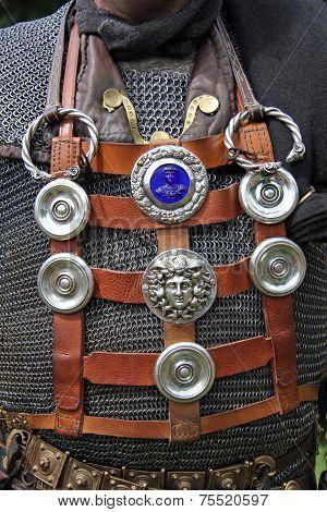 Centurion pturges (close-up)
