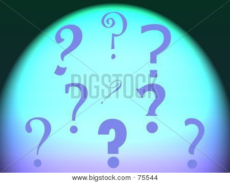 Spotlight Questions