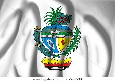 Flag of Coat of arms of Goias, Brazil
