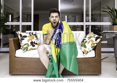 Brazilian supporter celebrates at home
