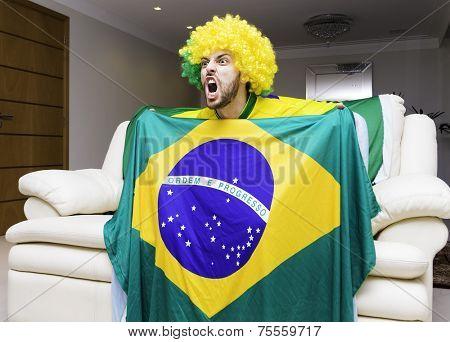 Brazilian fan celebrates at home