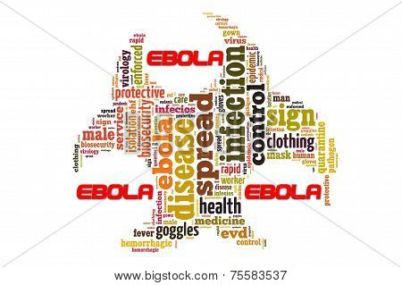View of Ebola disease in word collage poster