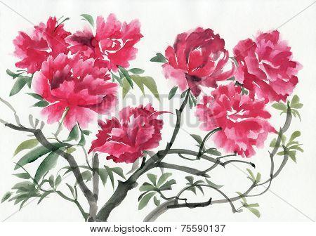 A branch of dark red azalea tree.