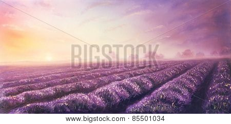 Original Oil Painting Of Lavender Fields On Canvas.sunset Landscape.pink And Purple Morning Light, C