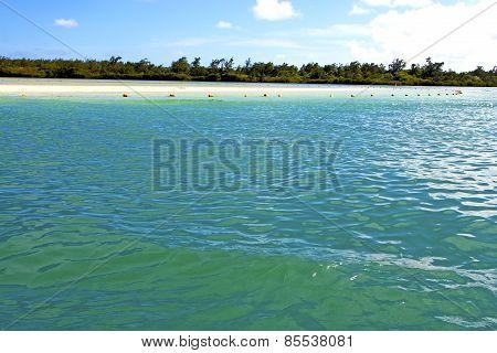 Beach Ile Du Cerfs Seaweed  Indian Ocean Sky And Rock