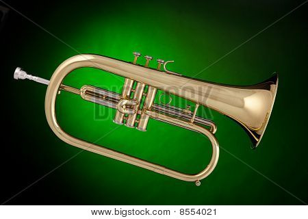 Flugalhorn Trumpet Isolated On Green