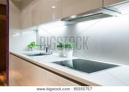 Modern Kitchen With Induction Hob