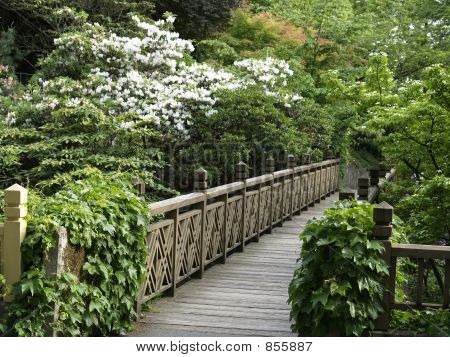 Bridge to Crsytal Gardens