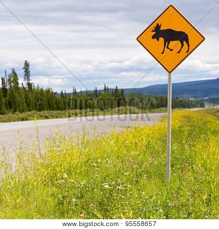 Highway Warning Roadsign Attention Moose Crossing
