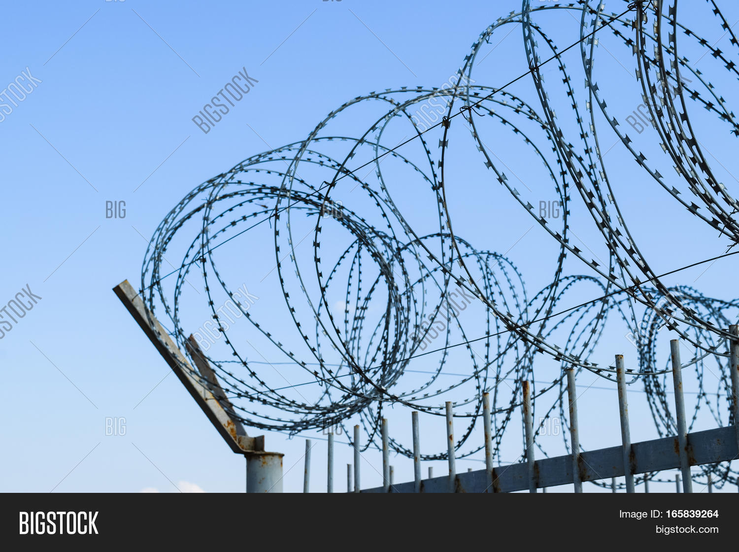 Barbed Wire On Fence. Image & Photo (Free Trial) | Bigstock