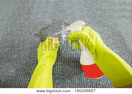 Person Hand Cleaning The Grey Carpet With Detergent And Sponge To Remove Stains