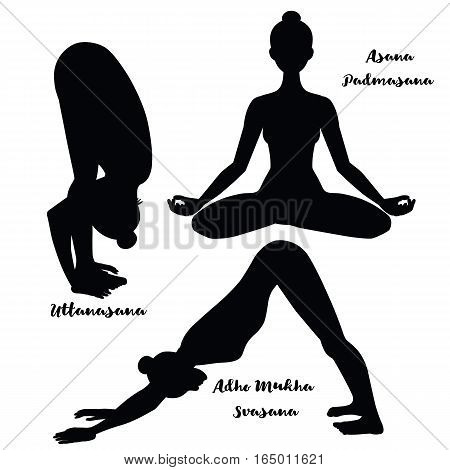 Women silhouette. Yoga lotus pose. Padmasana. Adho mukha svanasana. Downward dog. Uttanasana, forward fold yoga pose. Harmony, meditation Workout Vector illustration