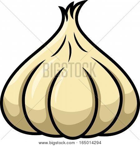 Garlic Cartoon Illustration Isolated on White Background