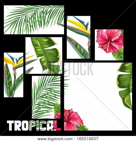 Background with tropical leaves and flowers. Palms branches, bird of paradise flower, hibiscus.