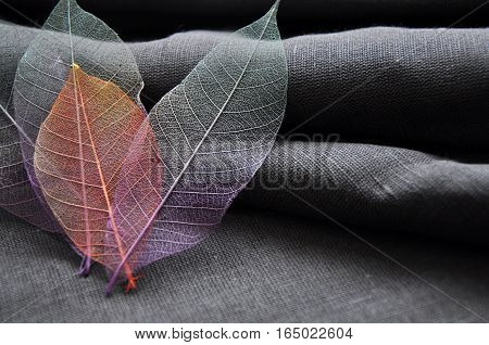 Colorful skeleton leaves in heart shape on gray background