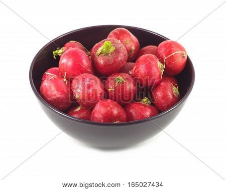 Many wet Radishes in purple bowl closeup isolated