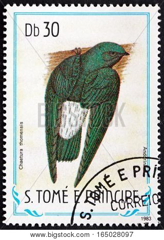 SAO TOME AND PRINCIPE - CIRCA 1983: a stamp printed in Sao Tome and Principe shows Sao Tome Spinetail Chaetura Thomensis Endemic Bird circa 1983