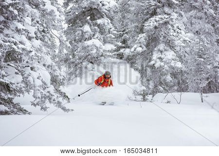 Skier on off-piste ski slope in forest
