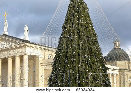 VILNIUS, LITHUANIA: The Cathedral and the Palace of the Grand Dukes of Lithuania on Cathedral Square with a Christmas tree in the foreground