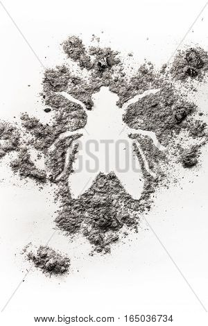 House fly bug silhouette drawing symbol made in grey ash dust dirt