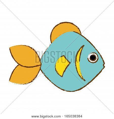 colorful fish icon image vector illustration design