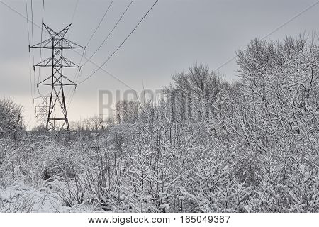 High-voltage power line in the deciduous forest abundantly covered with snow