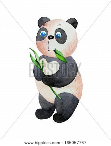 Cartoon panda eating leaves in watercolor. Hand drawn illustration isolated on white background.