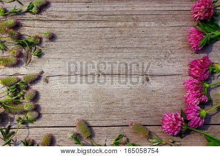 decoration with red clover flowers like a frame on the grey wooden background