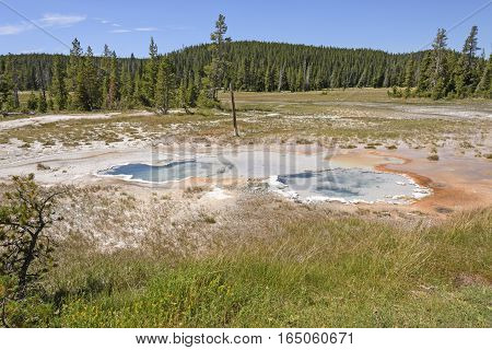 Thermal Spring Twins in the Wild of Yellowstone National Park in Wyoming