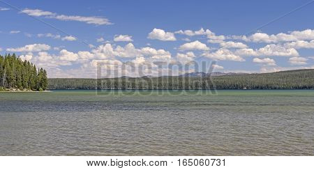 Colorful Bay and Lake Water in the Sun on Shoshone Lake in Yellowstone National Park in Wyoming