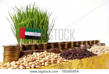 United Arab Emirates Flag Waving With Stack Of Money Coins And Piles Of Wheat And Rice Seeds